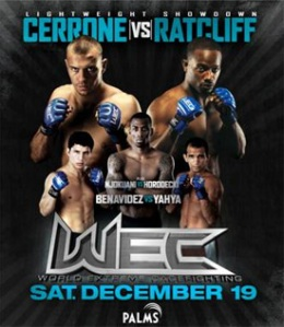 wec-45-poster